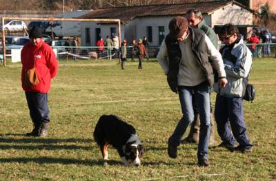 Club Canin du Périgord Vert